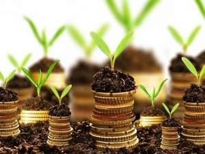 investicii-v-zemlyu